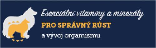 AAA On Esenciální vitamíny