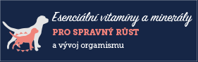 AAA On Esenciální vitamíny large
